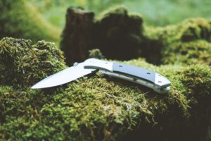 jackknife-1854043_1920